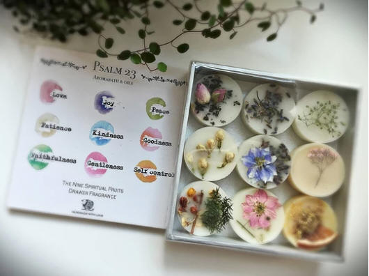 Nine fruits fragranced wax